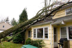 Storm House Damage